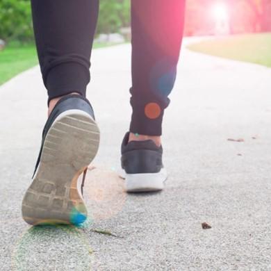 הולכים בתלם: אימוני הליכה לבריאות ולהרזיה